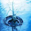 Flaque d'eau