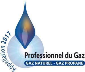 Logo professionnels du gaz 2017